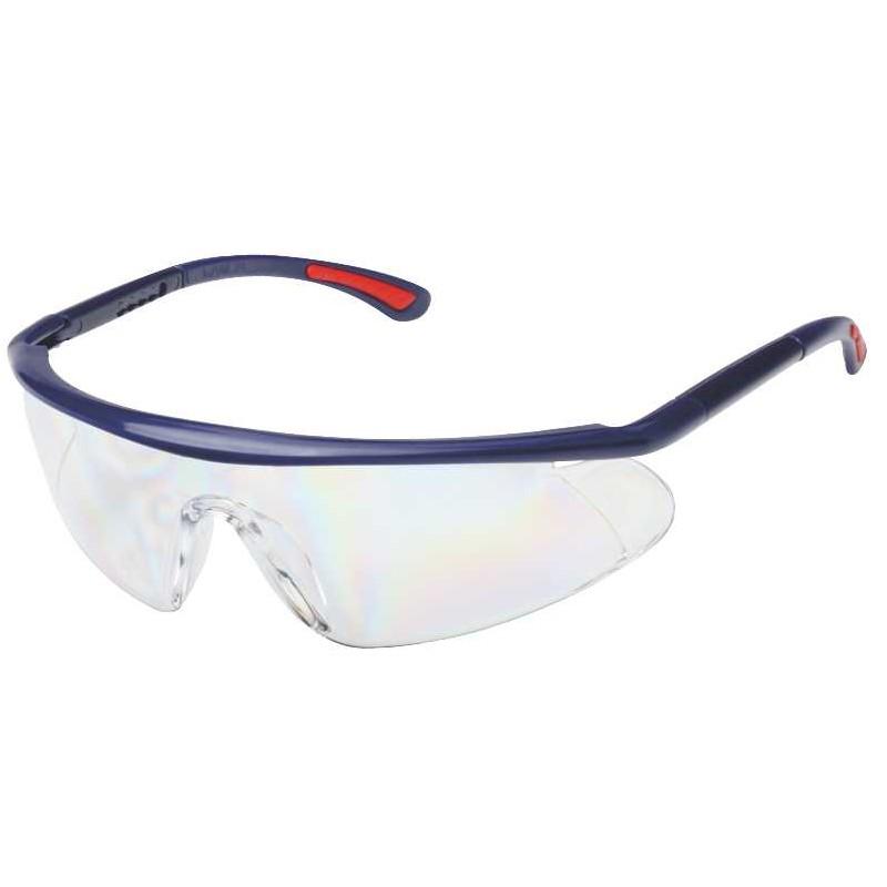 glasses BARDEN